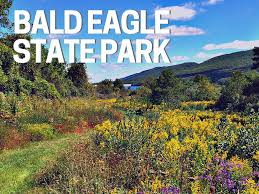 Know Before You Go: Bald Eagle State Park