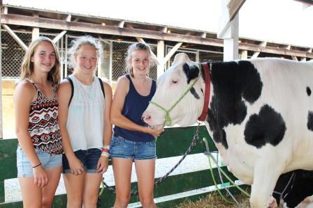 44th Annual Clinton County Fair